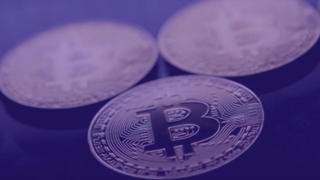 bitcoin profit calculator