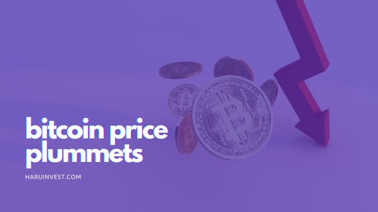 Bitcoin Price Plummets